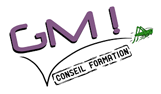 GM Conseil Formation